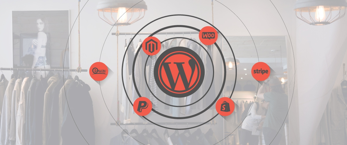 Web Software graphic